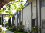 Pasadena Condominium-0004